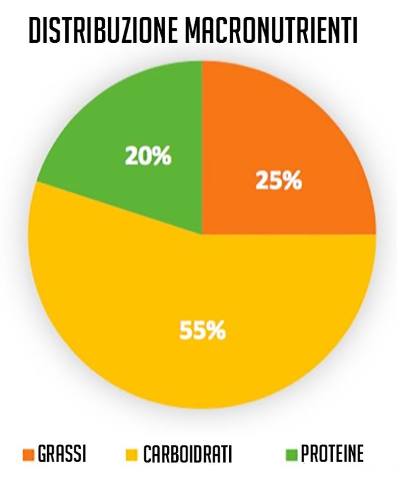 DASH Distribuzione macro nutrienti