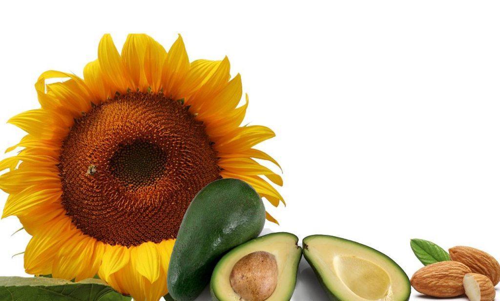 La vitamina E: proprietà e cibi che la contengono